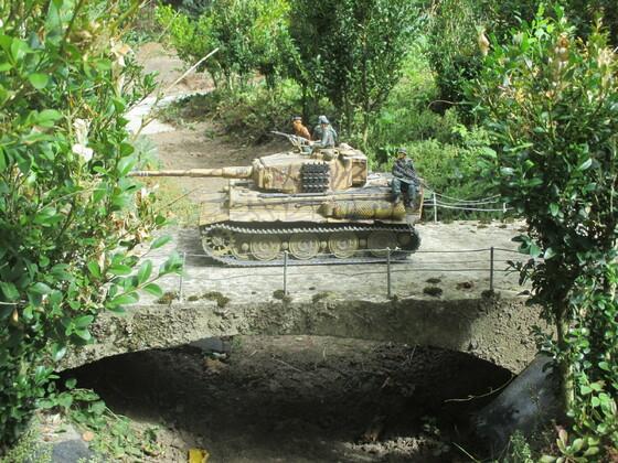 Tiger auf Erkundung
