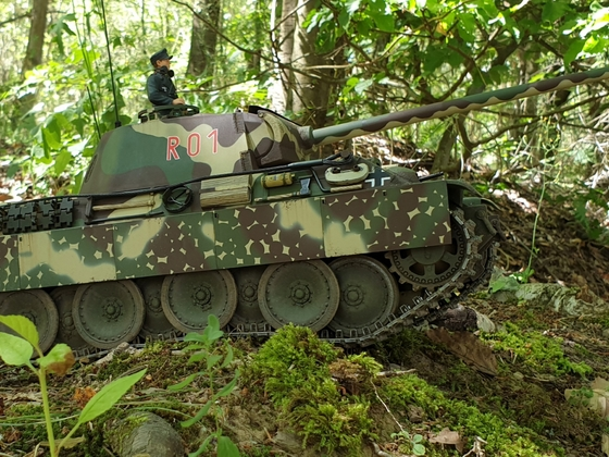 Panther R01.01