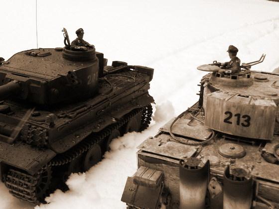 Treffen von Tiger früh und Tiger mittel im Schneetreiben