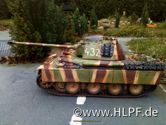 Panther by painted malzburg