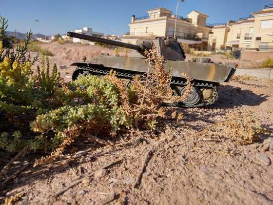 Einsamer Panther in Spanien